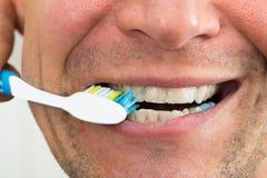 Denti di spazzolatura dell'uomo immagine stock