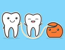Denti e filo per i denti Immagine Stock