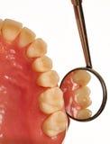 Denti esaminati secondo lo specchio dentale durante il controllo fotografia stock