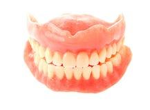 Denti falsi isolati su bianco Immagini Stock Libere da Diritti