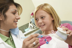 Denti puliti di Showing How To del dentista Immagine Stock Libera da Diritti