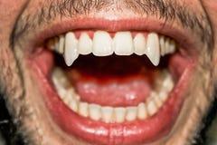 Denti taglienti del vampiro Immagine Stock