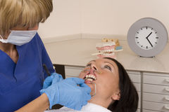 Dentist Stock Photos