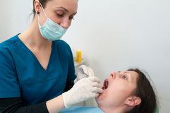 Dentist in action. Dentist perform regular checkup the patient's dental health Stock Images