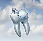 Dentist Advice. For dental health care and teeth checkup medical concept with a doctor in uniform riding and guiding a human tooth with a harness as a metaphor Stock Image
