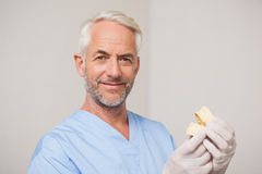 Dentist in blue scrubs holding mouth model Stock Photography