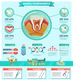 Dentist Checkup Importance Infographic Flat Banner Stock Photo