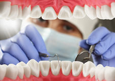Dentist checkup patient teeth, Inside mouth view Royalty Free Stock Images