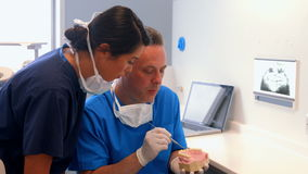 Dentist and coworker examining model teeth. At the dental office stock video footage