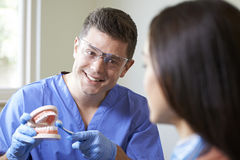 Dentist Demonstrating Correct Use Of Toothbrush To Female Client Royalty Free Stock Image