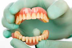 Dentist with dental prostheises Royalty Free Stock Photo