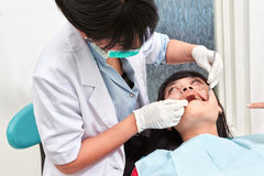 Dentist examing teeth Stock Image