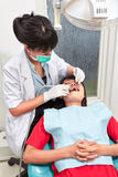 Dentist examing teeth Stock Images
