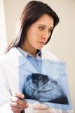 Dentist Examining X-Ray Stock Photos