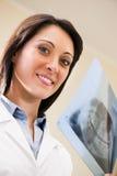 Dentist Examining X-Ray Royalty Free Stock Photography