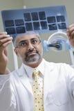 Dentist Examining X-Ray Report Royalty Free Stock Photos