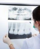 Dentist examining xray Stock Photos