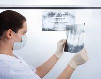 Dentist Examining Xray Royalty Free Stock Images