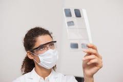 Dentist examining xrays on computer Stock Photos