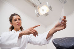 Dentist examining xrays and pointing to them Royalty Free Stock Photo