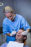 Dentist examining a young patient with tools Stock Image