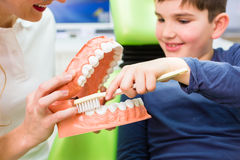 Dentist explaining boy cleaning tooth Royalty Free Stock Photo