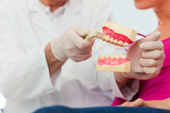 Dentist explaining teeth brushing to patient Stock Image