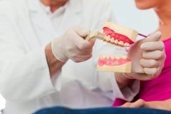 Dentist explaining teeth brushing to patient Stock Image
