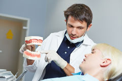 Dentist explaining treatment with fake denture Royalty Free Stock Photography
