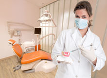 Dentist explaining treatment Stock Photography
