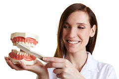 Dentist explains technique for Stock Photos
