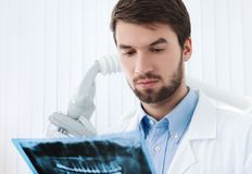 Dentist goes deep into details of roentgenogram Royalty Free Stock Photo