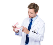 Dentist hold with denture Stock Photo