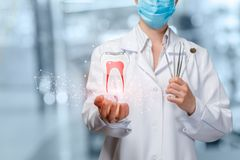 A dentist holding a digital tooth model with roots. A closeup of dentist holding image of digital tooth model with roots and set of dental medicine tools at stock photography