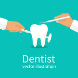 Dentist holding instruments. In the hands of examining the patient`s tooth. Vector illustration flat design. Isolated on background. Stomatology concept. Oral Stock Image
