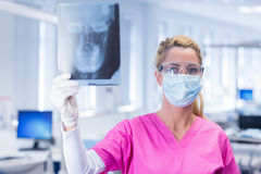 Dentist holding an x-ray and looking at camera Royalty Free Stock Photos