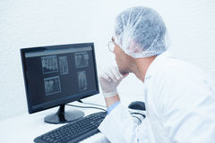 Dentist looking at x-ray on computer Stock Photography