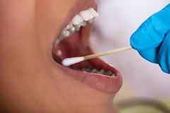 Free Dentist Making Saliva Test On The Mouth With Cotton Swab Stock Image - 126273871