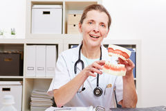 Dentist with oversized dentures in office Stock Photography