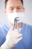 Dentist's extracting forceps Stock Photography