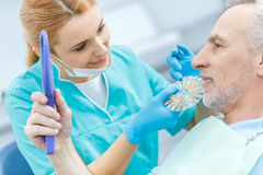 Dentist with samples comparing teeth of mature patient looking at mirror Royalty Free Stock Image