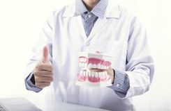 Dentist Showing Cleaning brush teeth denture or dental jaw model, dentistry instruments in dentist`s office.  stock photos