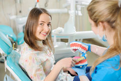 Dentist showing dental jaw model to patient in dentist`s clinic Royalty Free Stock Photo