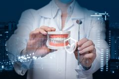 A dentist showing a denture model and a dental mirror with quality sign in front of. A closeup of a doctor holding a denture model and a dental mirror at the royalty free stock images