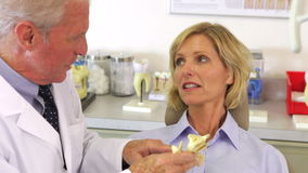 Dentist Showing Female Patient Model Of Jaw Bone Royalty Free Stock Photo