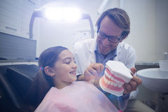 Dentist showing model teeth to patient Stock Image