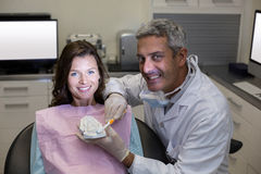 Dentist showing mouth model to female patient Stock Photography