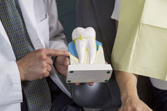 Dentist showing patient how to care for teeth with display Royalty Free Stock Photos