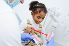 Dentist shows the layout of child tooth jaw Stock Images