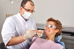 Dentist shows model jaw Royalty Free Stock Photography